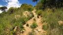 Vigia Trail (71)