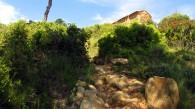 Vigia Trail (76)