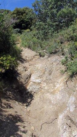 Vigia Trail (92)