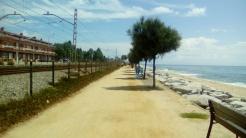 Cursa El Masnou (11)