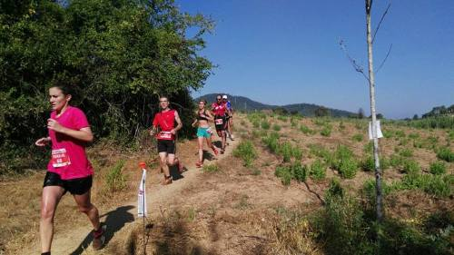 cursa tRAIL fLORESTA (6)