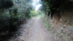 Gurrinada (5)