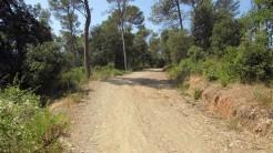 Trail Floresta ok (11)
