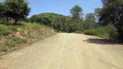 Trail Floresta ok (30)