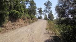 Trail Floresta ok (32)