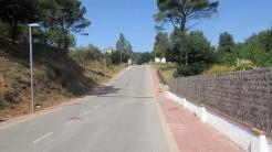 Trail Floresta ok (4)
