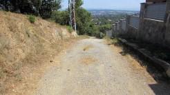 Trail Floresta ok (41)