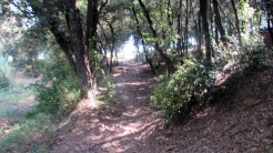 Trail Floresta ok (45)