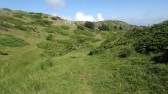 Trail Fonts del Montseny (104)