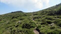 Trail Fonts del Montseny (105)