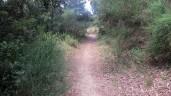 Trail Fonts del Montseny (1)