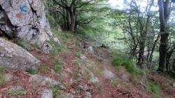 Trail Fonts del Montseny (110)