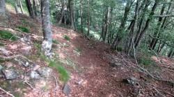 Trail Fonts del Montseny (116)