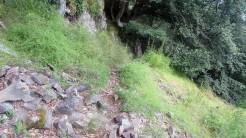 Trail Fonts del Montseny (121)