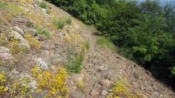Trail Fonts del Montseny (122)