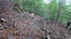 Trail Fonts del Montseny (123)