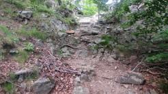 Trail Fonts del Montseny (143)