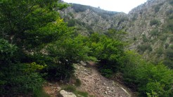 Trail Fonts del Montseny (148)