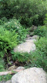 Trail Fonts del Montseny (157)