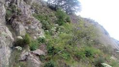 Trail Fonts del Montseny (160)