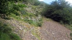 Trail Fonts del Montseny (163)