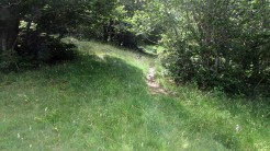 Trail Fonts del Montseny (169)