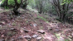 Trail Fonts del Montseny (170)