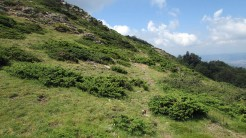 Trail Fonts del Montseny (173)
