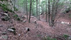 Trail Fonts del Montseny (187)