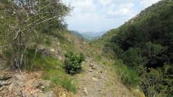 Trail Fonts del Montseny (188)