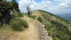 Trail Fonts del Montseny (190)