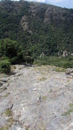 Trail Fonts del Montseny (198)