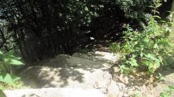 Trail Fonts del Montseny (204)