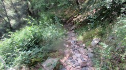 Trail Fonts del Montseny (210)