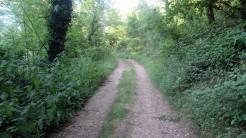 Trail Fonts del Montseny (21)