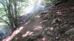 Trail Fonts del Montseny (214)