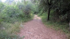 Trail Fonts del Montseny (223)