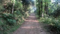 Trail Fonts del Montseny (23)