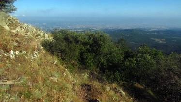 Trail Fonts del Montseny (40)