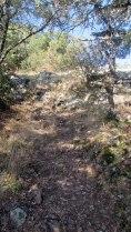 Trail Fonts del Montseny (41)