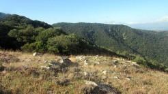 Trail Fonts del Montseny (43)