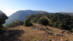 Trail Fonts del Montseny (47)