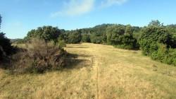 Trail Fonts del Montseny (54)