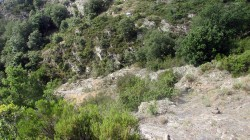 Trail Fonts del Montseny (59)