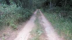 Trail Fonts del Montseny (6)