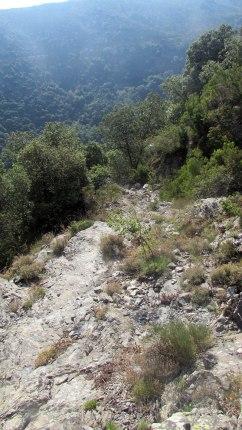 Trail Fonts del Montseny (61)