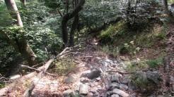 Trail Fonts del Montseny (64)