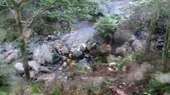 Trail Fonts del Montseny (65)