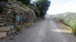 Trail Fonts del Montseny (69)