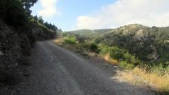 Trail Fonts del Montseny (70)